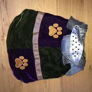 🎃 DOG Costume - Knight